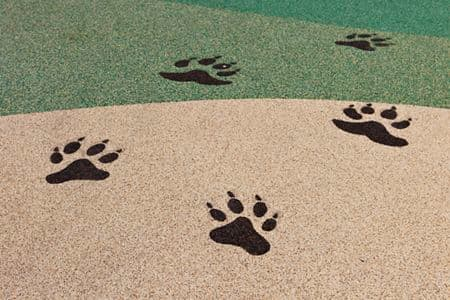 Detail view of paw prints at River Oaks Park at Crescent Village Apartment Homes in San Jose, CA.