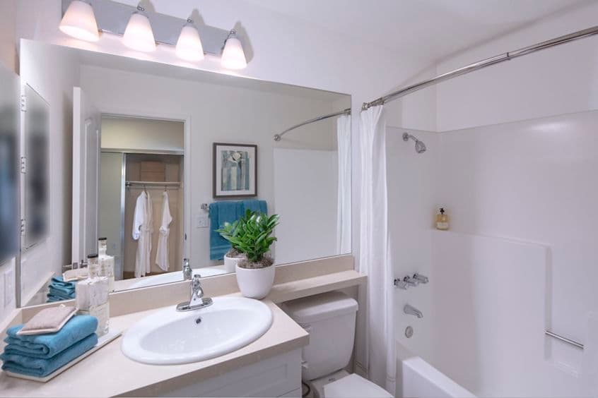 Interior view of bathroom at Northwood Park Apartment Homes in Irvine, CA.