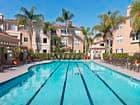 Daytime exterior view of pool at Santa Clara Apartment Homes in Irvine, CA.