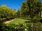 Exterior view of dog park at Cambria at The Village at Irvine Spectrum Apartment Homes in Irvine, CA.