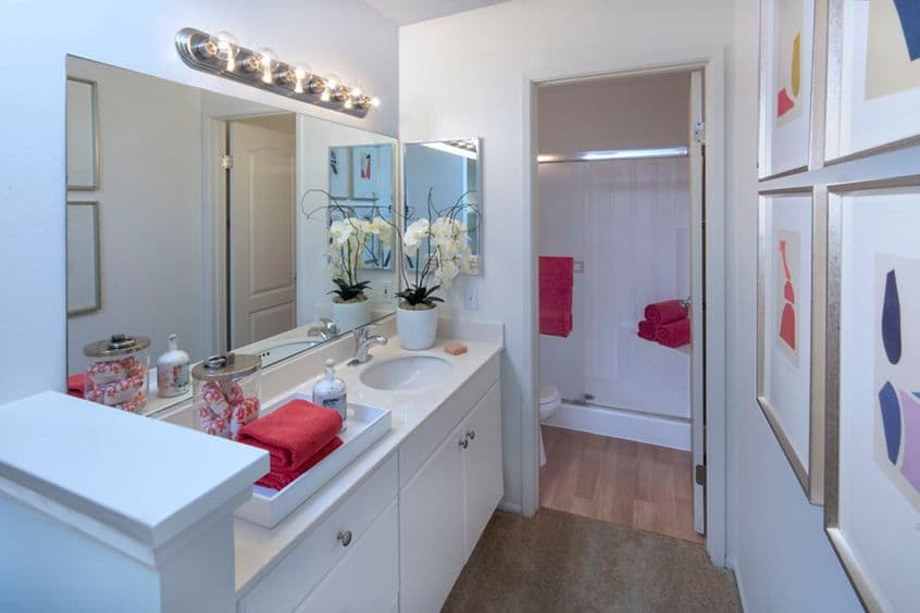 Interior view of bathroom at Turtle Rock Vista Apartment Homes in Irvine, CA.