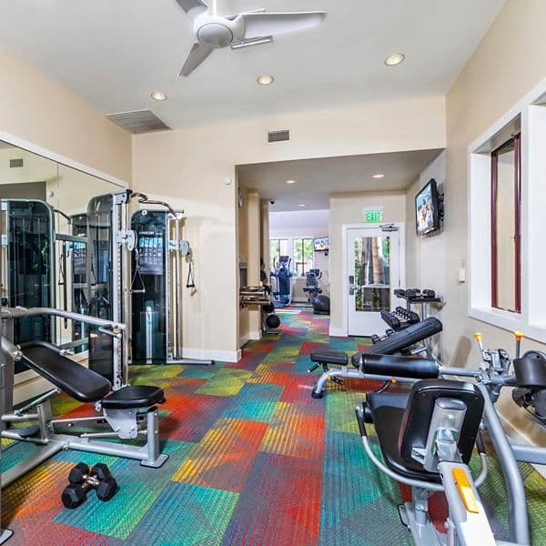 Interior view of fitness center at Ambrose Apartment Homes at University Town Center in Irvine, CA.