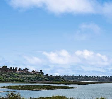 View of Back Bay next to Baypointe Apartment Homes in Newport Beach, CA.