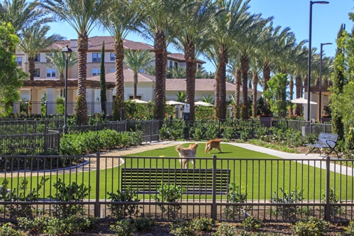 Dog park at Amalfi Apartment Homes in Tustin, CA.