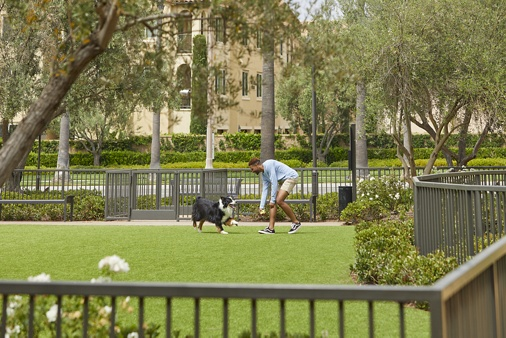 Exterior view of man with dog at dog park at Los Olivos Apartment Homes in Irvine, CA.