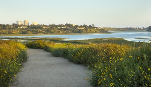 Exterior daytime view of Newport Back Bay in Newport Beach, CA.