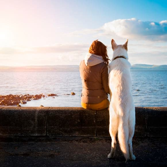 Young hipster girl with her pet dog at a seaside, colorised image