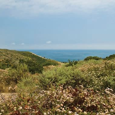 Images of Crystal Cove from Southern California Coastal Mountains to the Sea book. Stoecklein 2011.